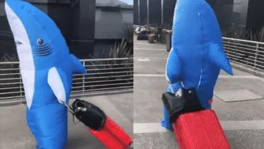 Se disfraza de tiburón para evitar contagiarse de Covid-19 en Tijuana