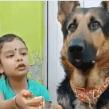 Tierna niña alimenta a su perro con las manos
