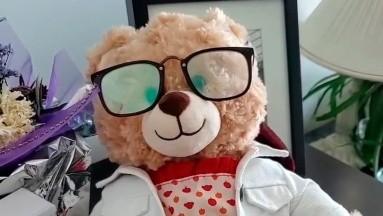 Roban oso con voz de madre que falleció de cáncer; Ryan Reynolds ofrece 100 mil pesos por devolverlo