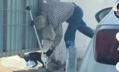 ¡Enternecedor! Abuelito alimenta a un gato abandonado y se hace viral