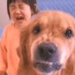 VIRAL: Madre regaña a su hija y su perrito sale en su defensa