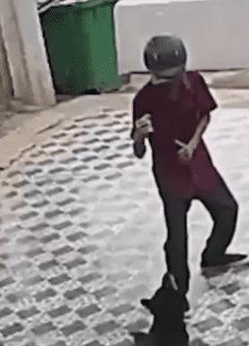 VIDEO: Hombre se defiende de ataque de perros como Jackie Chan