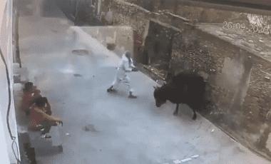 VIDEO: ¡Karma! Hombre golpea a toro en la calle y este se defiende atacándolo